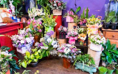 Montflora Florist